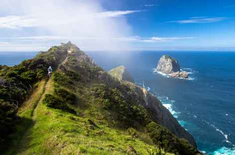 Rando au Cape Brett - Nouvelle Zélande -