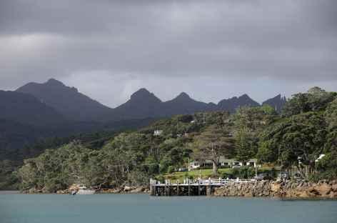 Vers le port de Whangaparapara, Great Barrier Island - Nouvelle Zélande -