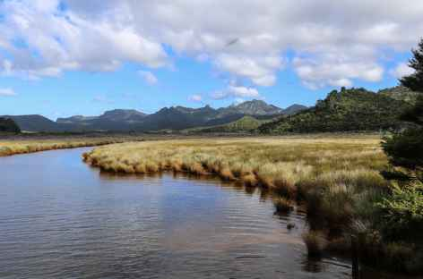 Vers Awana Bay, Great Barrier Island - Nouvelle Zélande -