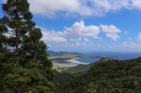 Rando sur le Coastal track, Great Barrier Island - Nouvelle Zélande -