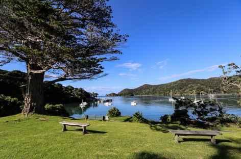 Baie de Whangaparapara, Great Barrier Island - Nouvelle Zélande -