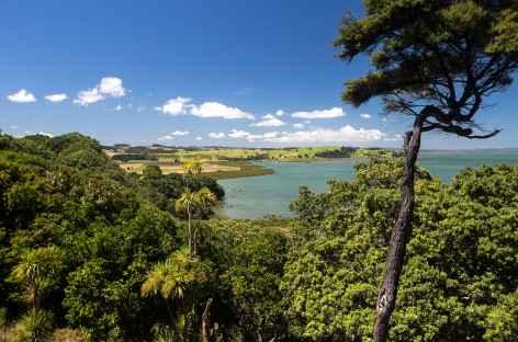 Marche au dessus de Kaipara Harbour  - Nouvelle Zélande -