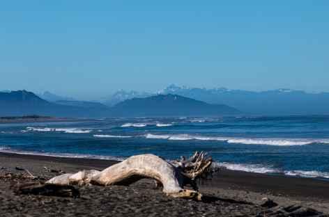 Depuis Punakaiki, les Alpes du Sud - Nouvelle Zélande -