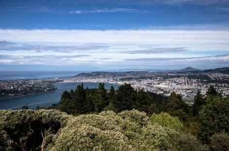 Dunedin depuis Signal Hill - Nouvelle Zélande -
