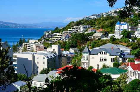 Wellington, colline du Mt Vistoria - Nouvelle Zélande -