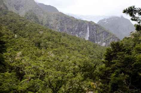 Montée à Rob Roy Glacier - Nouvelle Zélande -