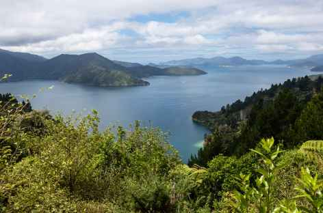 Marlborough Sound - Nouvelle Zélande -