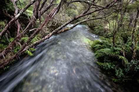 Pupu Springs - Nouvelle Zélande -