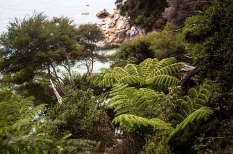 Abel Tasman Coastal Track - Nouvelle Zélande -