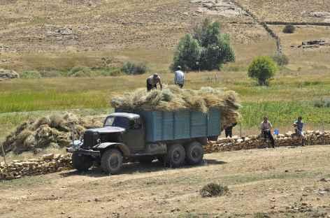 Scène rurale dans la région de Sob - Ouzbékistan -