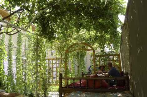 A l'ombre des treilles à Samarcande - Ouzbékistan -