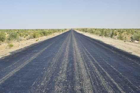 Traversée du Désert de Kyzyl Koum - Ouzbékistan -