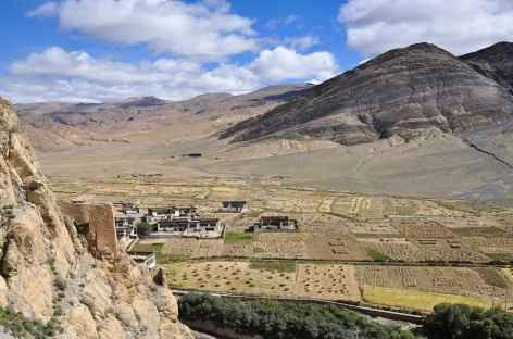Cultures aux environs de Shegar - Tibet -