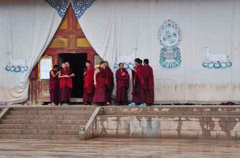 Moines au monastère de Longwu, Amdo - Chine -