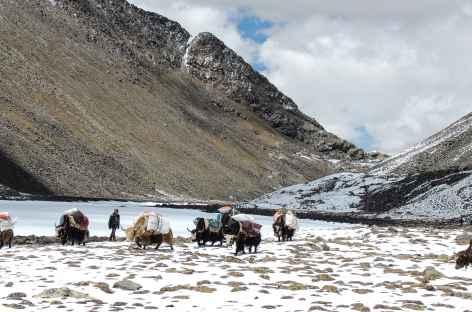 Les Lacs Cheuteu - Tibet -