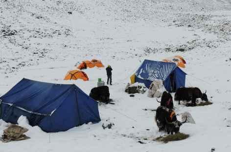 Surprise au réveil - Tibet -