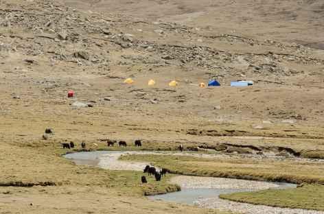 Sur le trek - Tibet -