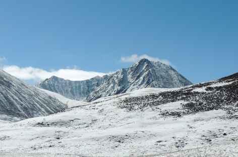 Plateau de Pango Tora - Tibet -