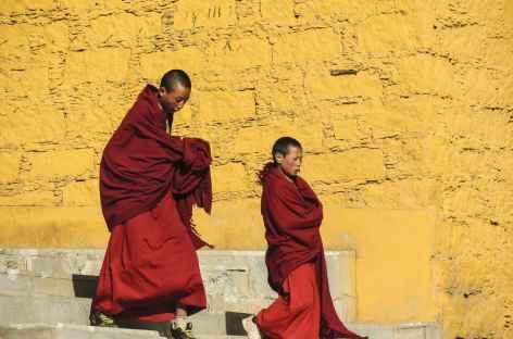 Moines - Tibet -