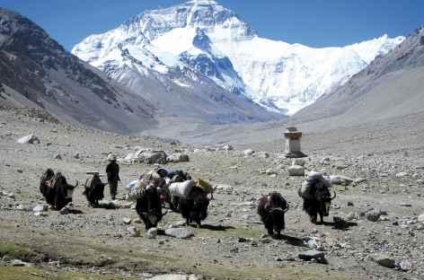 Everest Tibet -