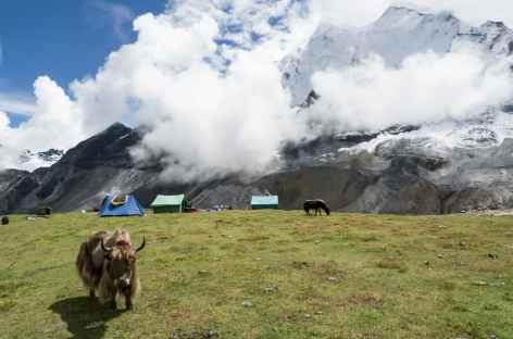 Lever de soleil sur le camp - Tibet -