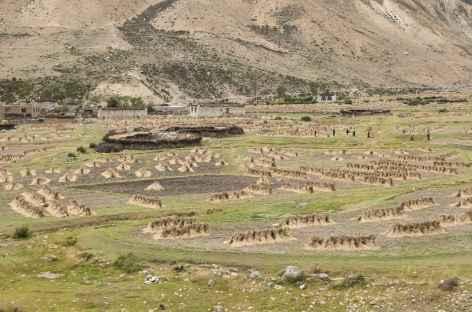 Les cultures - Tibet -