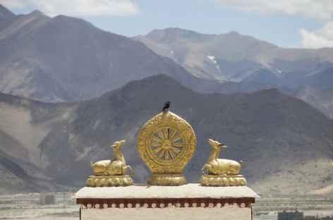 La roue du Dharma et les biches - Tibet -