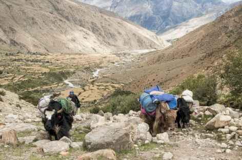 Vers le premier col - Tibet -