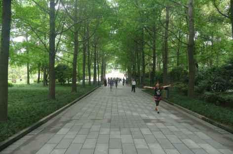 Parc de Chengdu -