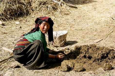 Préparation du torchi avec les bouses - Tibet -