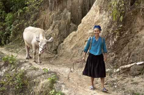 Rencontre avec les villageois -