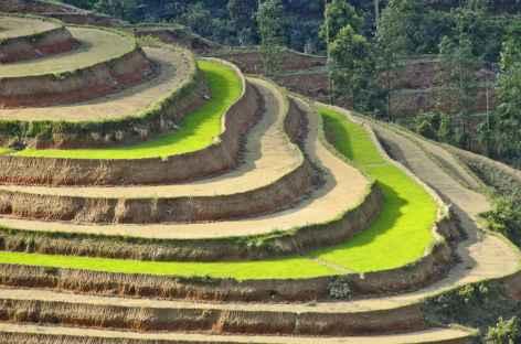 Beauté des courbes dans le Haut Tonkin -