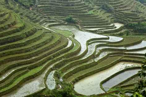Région de Pan Hou -