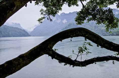 Région Lac Ba Be Vietnam -