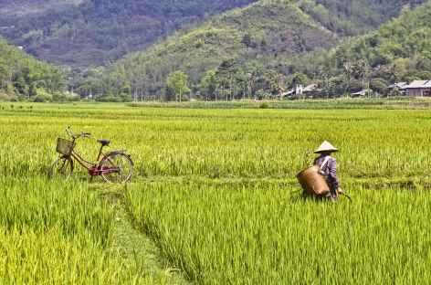 Balade dans les rizières de Mai Chau Vietnam -