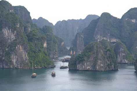 Navigation dans la baie d'Halong Vietnam -