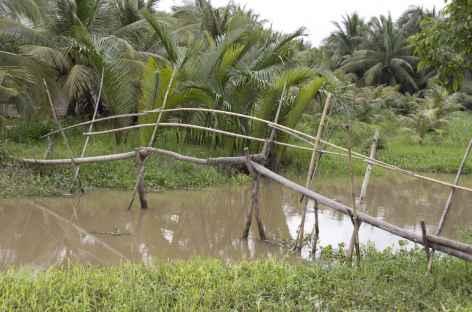 Delta Mekong Vietnam -