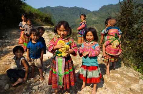Minorités Hmongs fleuris Rizières région Pan hou Vietnamietnam -
