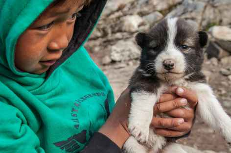 Jeune inuit et son chiot, Kulusuk - Groenland -