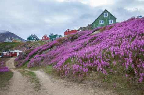 Rando autour de Tasiilaq - Groenland -