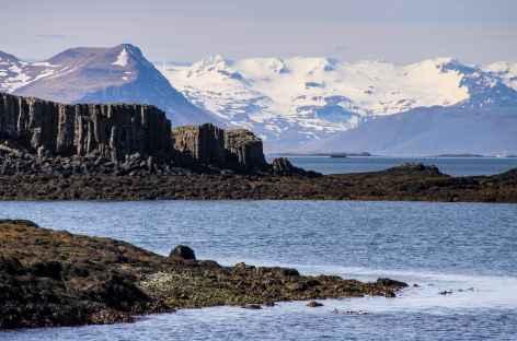 Sortie en mer depuis la péninsule de Snaefellsnes - Islande -