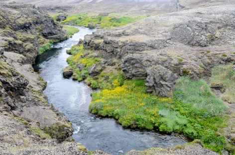 Trek entre Áfangagil et Rjúpnavellir, Islande -