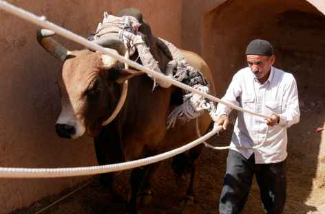 Gactchak, puit d'eau - Iran -
