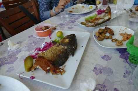 Repas de poissons - Iran -