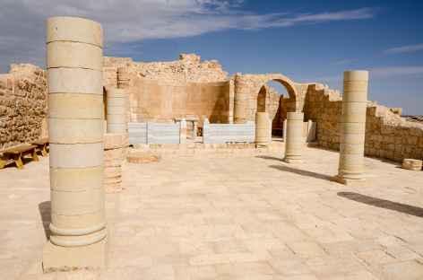 Cité nabatéenne d'Avdat, désert du Néguev - Israël -