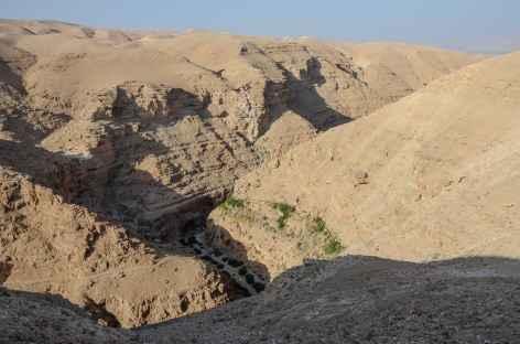 Wadi Qelt - Palestine -