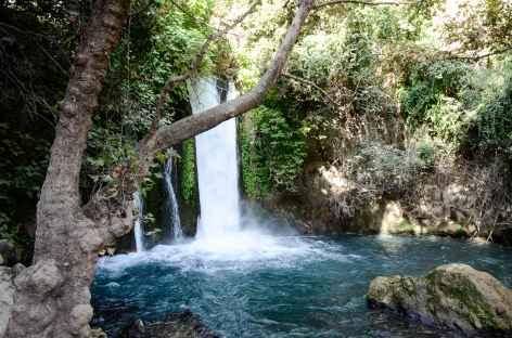 Réserve naturelle de Banias, Haute Galilée - Israël -