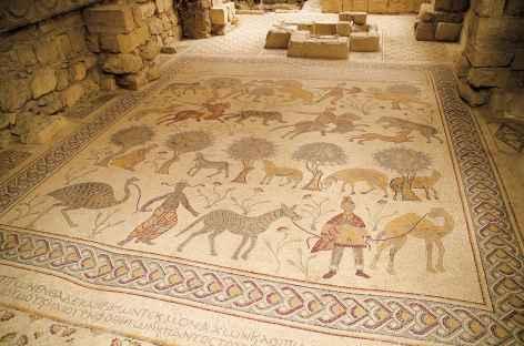 Mosaïque à Madaba - Jordanie -