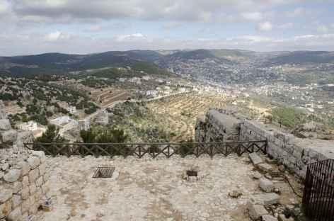 Depuis le château d'Ajloun - Jordanie -