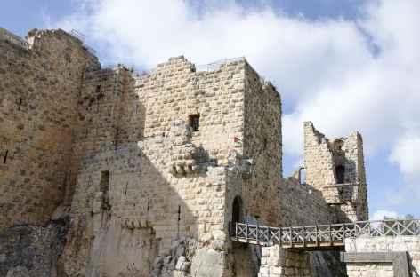 Château d'Ajloun - Jordanie -